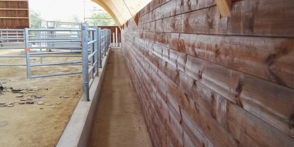 Couloir circulation bovins - Mur contention bois