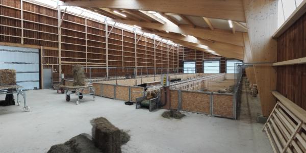 Bergerie structure bois